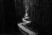 I Walk Towards / Destinations