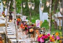 Outdoor party-wedding-etc.
