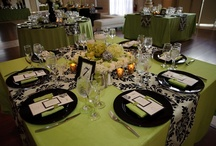 """Damask with Celery Pop / Cathy and Steve were married April 2011 at Stone House in Sterling NJ.  We did black and white damask with a """"POP"""" of celery green.  Such a beautiful wedding and and even more incredible couple! Photo credit to Jamie K Photography {My Bellissima - NY & NJ Wedding Planning and Special Events Design} www.mybellissima.com"""