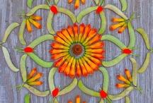 mandalas, natural & created
