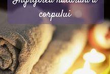 Ingrijirea naturala a corpului / Retete cu ingrediente naturale pentru ingrijirea corpului, miscare, nutritie, sanatate si frumusete