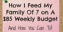 Large Family Meals