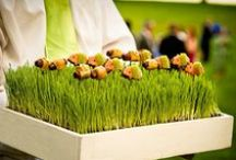 Peter Callahan / Some of my signature comfort foods and whimsical desserts from my catering company.