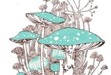 mushrooms / by M