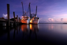 Apalachicola / by Perry Fulkerson