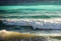 Sea / by Kate Gustafson