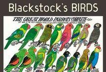 Birds / by Pomegranate Communications, Publisher