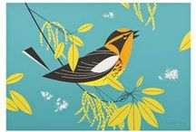 Charley Harper / Harper (1922-2007) was a pioneer of modernism and wildlife art. From puzzles to postcards and everything in between, we're thrilled to publish the work of this beloved American artist. / by Pomegranate Communications, Publisher