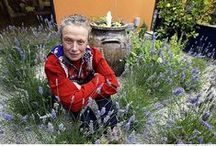 Admirable garden designers