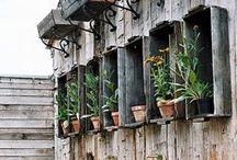 Garden shop / Jardineries du Monde