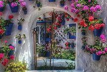 In giardino, in terrazza / arredo per giardino e terrazzo, giardinaggio, idee e tutorial
