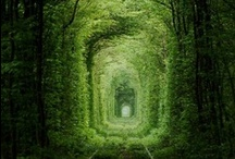 Travel - Pictures of amazing places