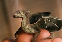 Etc - Fantasy, Imagination, Magical worlds
