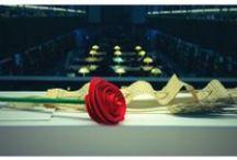 """Qui busca un llibre, troba una rosa / Imatges del concurs """"Busca un llibre i trobaràs una rosa"""""""