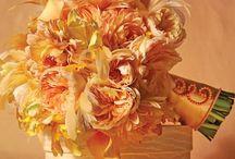 Weddings :: Orange / Orange is moving forward...bright, happy, energizing.  So many flower options...we love it! / by Angela's Bella Flora, Inc.