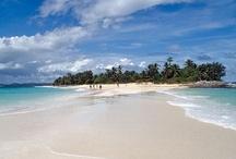 Madagascar  / J'ai passé 12 jours à Madagascar en novembre 1999. Antanarivo, Ifaty, Port Dauphin...beaux souvenirs ! / by Valérie Thuillier