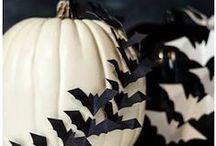 halloween / by Niki Davies