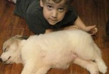 Furry Kids / Animals