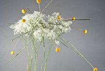 ikebana / ikebana, bonsai, and other forms of dynamic flower arranging.  / by Lauren Turk