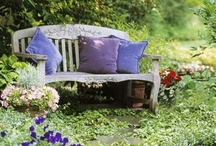 *•✿Benches and chairs in the garden / by colorko