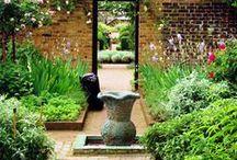 London garden ideas / Ideas for rescuing an old London garden