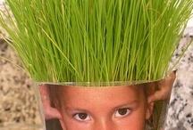Kids + Plants