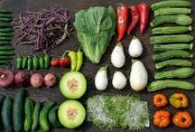 """Food and Recipes / Healthy recipes, food stories, and cooking tips can all be found on this board. Follow """"Food and Recipes"""" to get all the great info we're pinning!"""