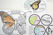 Kids + Nonfiction / Creative and engaging ways to incorporate nonfiction in education