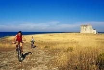 #DiscoveringPuglia / Come and discover art, nature, culture, traditions and food in Puglia :)