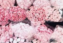 photography • spring florals / spring photography ideas & tips / color schemes / style inspiration / flowers / floral / bouquets