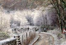 Mood A : Winterly / Seasonal Mood Board A: Winter