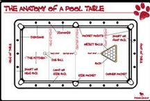 Billiard Infographics / A visual breakdown of all things billiard.