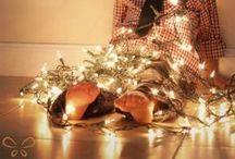 Christmas Card Ideas / by Shayla Bird