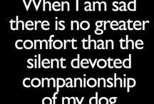 Doggies! / by Maddy Lockhart