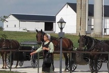 Amish &other Faces / by Bobbie Hofmister