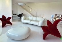 Dream Home / by Donlyn Starr