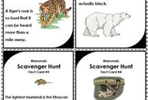 Science - Super Teacher Worksheets / Fun science printables and activities for students