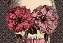 ..Skull.