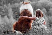 Furry Friends / by Christina Lopez