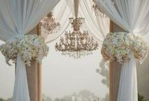 Wedding Decorations / by Darcey Nance