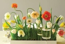 Flower Fun / Fun, interesting, and pretty ways to use flowers for your #events.