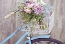Pedals / by Marla Affleck Radeke