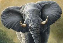 Elephants / by Mariangeles Mandagaran