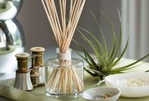 New Releases / New products ready to freshen your home or office!