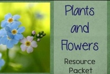 Plants Unit Study / The perfect Pinterest board for finding resources for All Things Plants.  Nature study ideas, hands-on projects, worksheets & printables, and more / by Lauren Hill