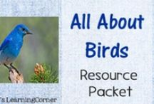Birds Unit Study Resources / The perfect Pinterest Board if you're studying birds in your homeschool!  Book suggestions, craft ideas, nature study helps, worksheets & printables, and more / by Lauren Hill