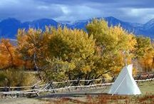 Idaho History / by Renae Deckard