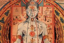 Yoga Wisdom / Yoga philosophy