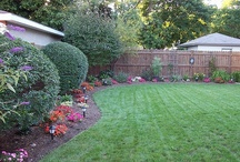 Landscaping and Gardening Ideas
