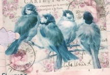blue birds / by Cynthia Lawrence Mullins